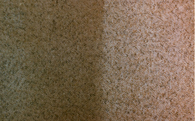 Carpet Cleaning Stain Removal Guide